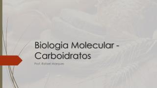 Biologia Molecular - Carboidratos