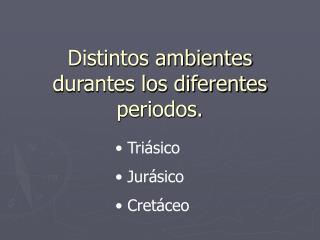 Distintos ambientes durantes los diferentes periodos.