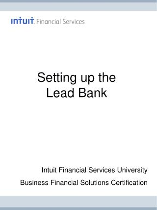 Setting up the Lead Bank