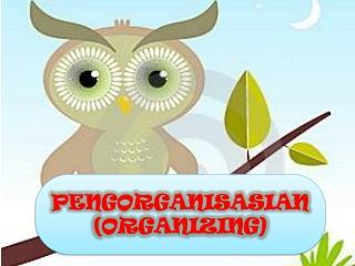 PENGORGANISASIAN (ORGANIZING)