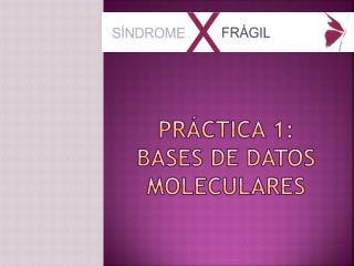 Pr�ctica 1:  Bases de datos moleculares