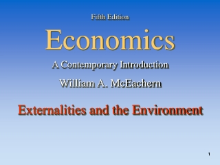 Externalities and the Environment