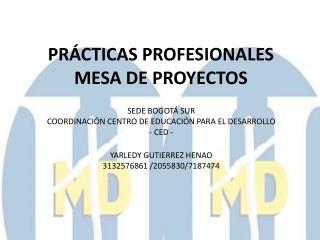 PRÁCTICAS PROFESIONALES MESA DE PROYECTOS