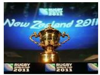 Me, You & The Rugby World Cup