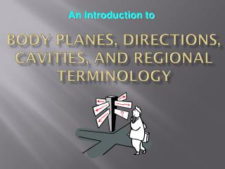 Body Planes, Directions,  Cavities, and Regional Terminology