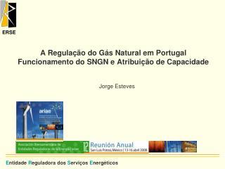 A Regulação do Gás Natural em Portugal Funcionamento do SNGN e Atribuição de Capacidade