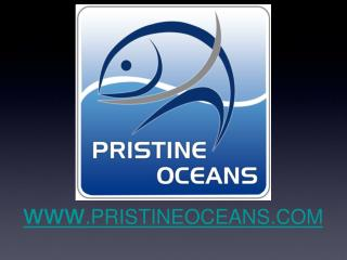 www .PRISTINEOCEANS.COM