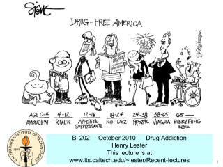 Bi 202     October 2010      Drug Addiction            Henry Lester This lecture is at