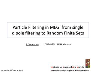 Particle Filtering in MEG: from single dipole filtering to Random Finite Sets