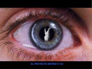EL PROYECTO MATRIZ # 124