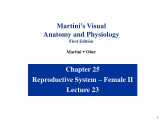 Chapter 25 Reproductive System � Female II Lecture 23