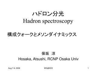 ハドロン分光 Hadron spectroscopy