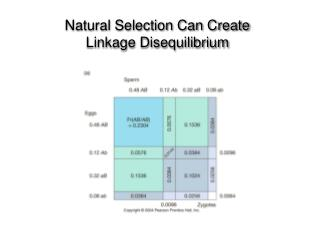 Natural Selection Can Create Linkage Disequilibrium