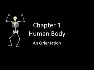 Chapter 1 Human Body