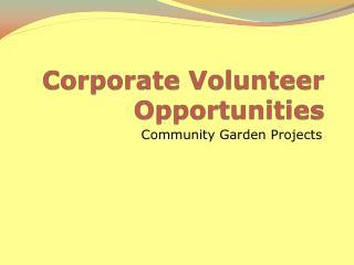 Corporate Volunteer Opportunities