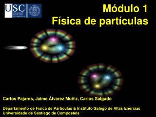 Módulo 1 Física de partículas