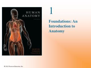 1 Foundations: An Introduction to Anatomy