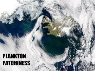 PLANKTON PATCHINESS