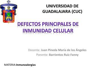 UNIVERSIDAD DE GUADALAJARA (CUC)