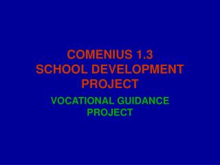 COMENIUS 1.3 SCHOOL DEVELOPMENT PROJECT