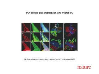 SR Franzdóttir  et al. Nature 000 , 1- 4  (2009) doi:10.1038/nature08167