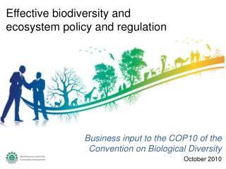 Business input to the COP10 of the Convention on Biological Diversity October 2010