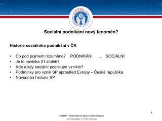Sociální podnikání nový fenomén?