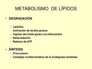 METABOLISMO  DE L�PIDOS