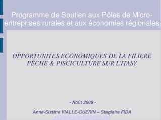 Programme de Soutien aux Pôles de Micro-entreprises rurales et aux économies régionales