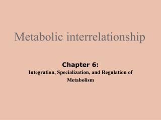 Metabolic interrelationship