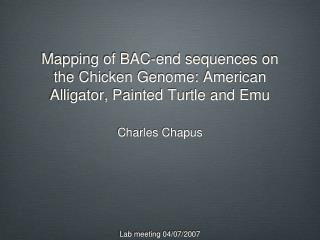 Mapping of BAC-end sequences on the Chicken Genome: American Alligator, Painted Turtle and Emu