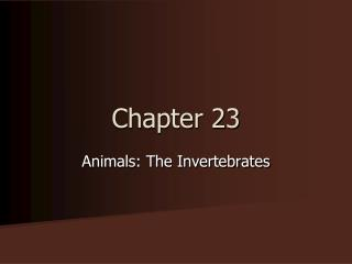 Chapter 23