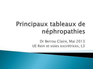 Principaux tableaux de néphropathies
