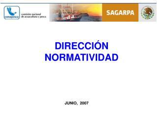 DIRECCIÓN NORMATIVIDAD