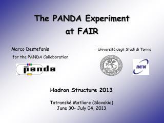 The PANDA Experiment at  FAIR