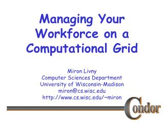 Managing Your Workforce on a  Computational Grid