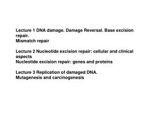 Lecture 1 DNA damage. Damage Reversal. Base excision repair. Mismatch repair
