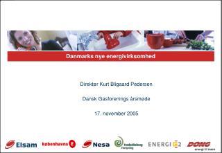 Danmarks nye energivirksomhed