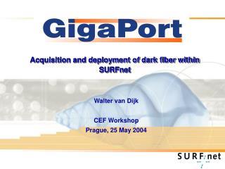 Acquisition and deployment of dark fiber within SURFnet