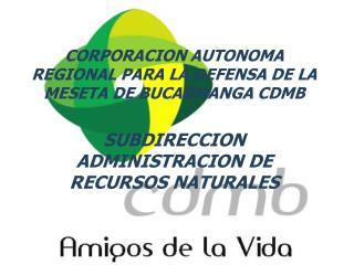 CORPORACION AUTONOMA REGIONAL PARA LA DEFENSA DE LA MESETA DE BUCARMANGA CDMB