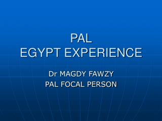 PAL EGYPT EXPERIENCE