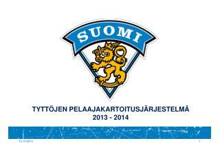 TYTTÖJEN PELAAJAKARTOITUSJÄRJESTELMÄ 2013 - 2014