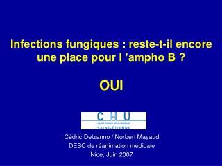 Infections fungiques : reste-t-il encore une place pour l  ampho B   OUI