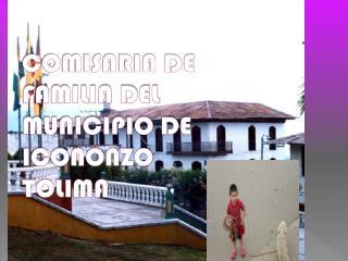 COMISARIA DE FAMILIA DEL MUNICIPIO DE ICONONZO TOLIMA