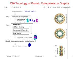 V20 Topology of Protein Complexes on Graphs