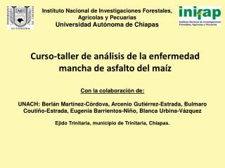 Curso-taller de análisis de la enfermedad mancha de asfalto del maíz