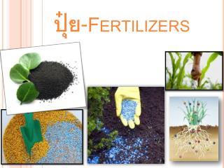 ปุ๋ย -Fertilizers
