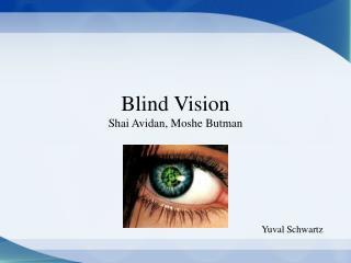 Blind Vision Shai Avidan, Moshe Butman
