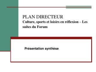PLAN DIRECTEUR Culture, sports et loisirs en réflexion – Les suites du Forum