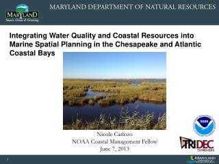 Nicole Carlozo NOAA Coastal Management Fellow June 7, 2013